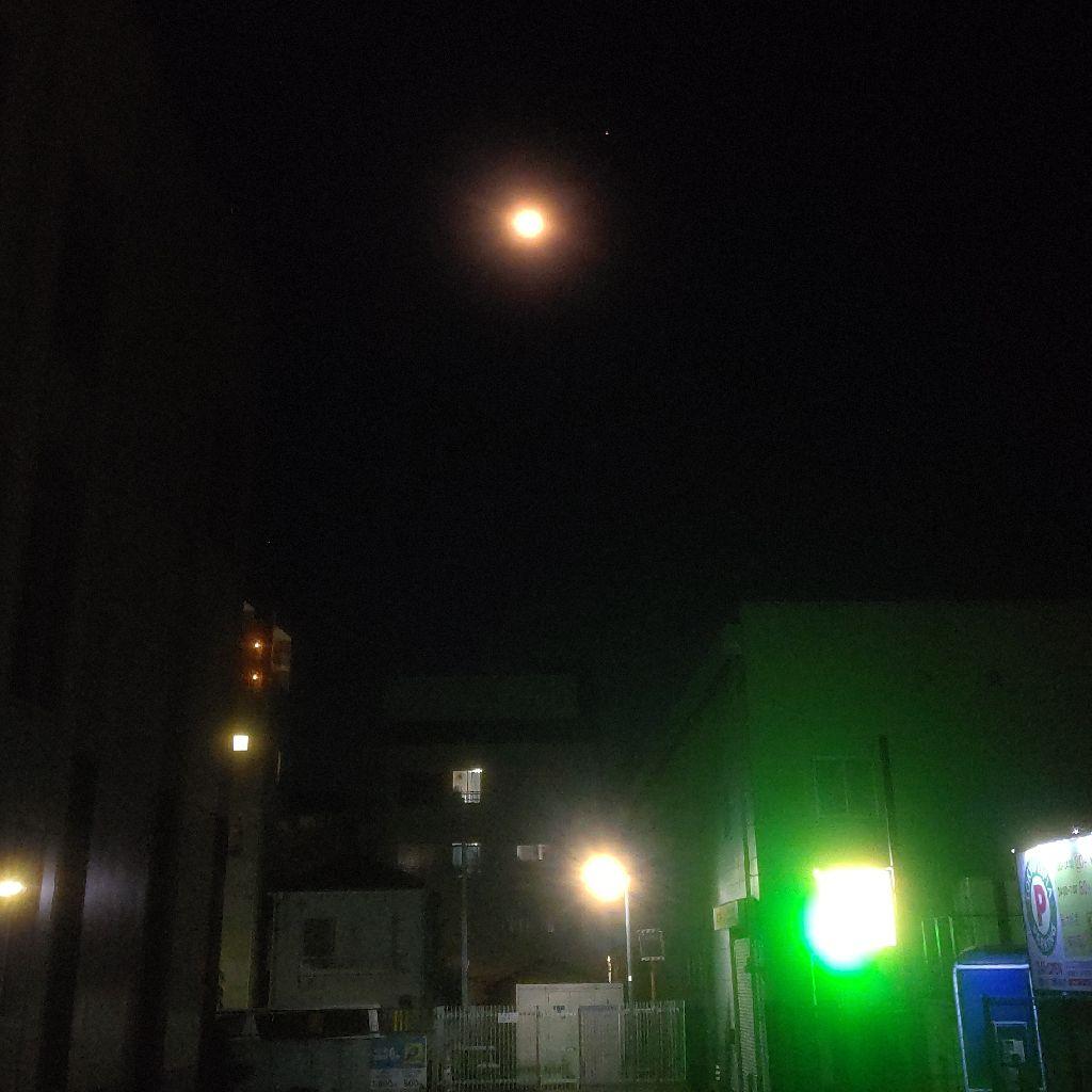 #397『まきお君と月と水🌃』