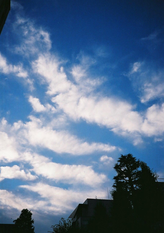 08/27 睡眠と雷