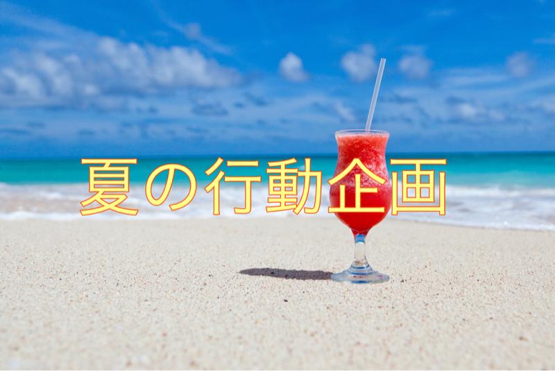 夏、何したい??