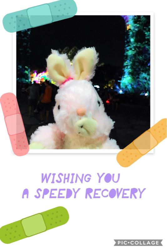 小兔子的「東京生活 」
