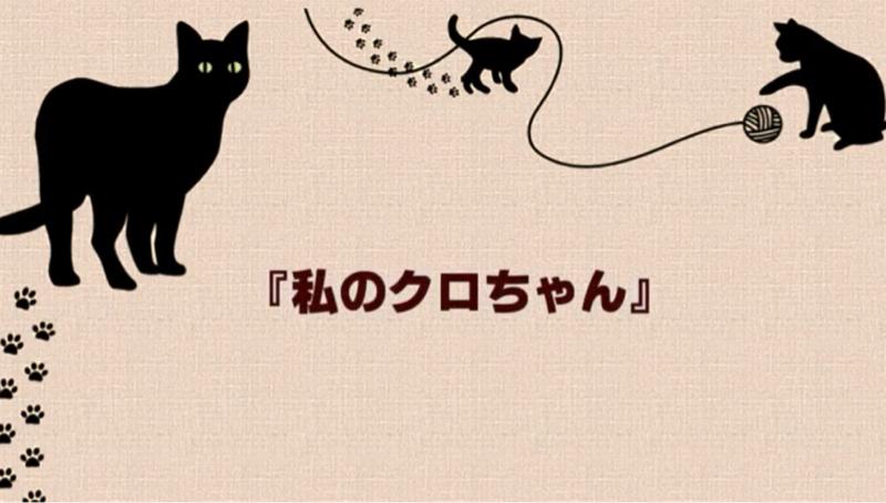 【私のクロちゃん】