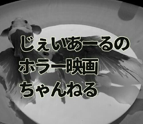 #56 映画「深海からの物体X」を紹介する
