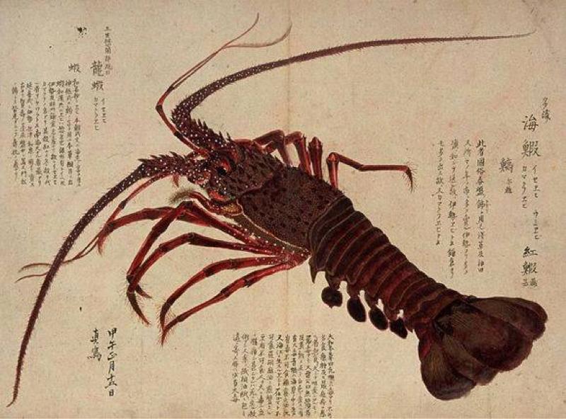 芥川龍之介さんの面白い文章を発見