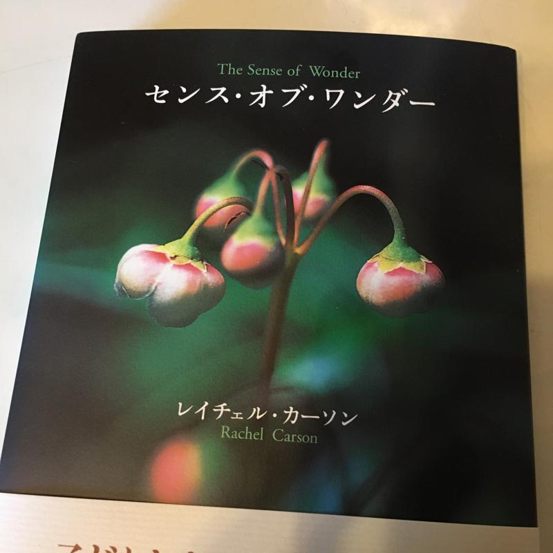 本を贈る。自分にも•*¨*•.¸¸☆*・゚