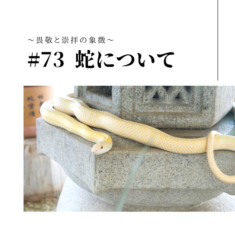 #73 蛇について