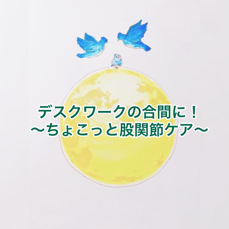 12膳目🍽デスクワークの合間に! 〜ちょこっと股関節ケア〜