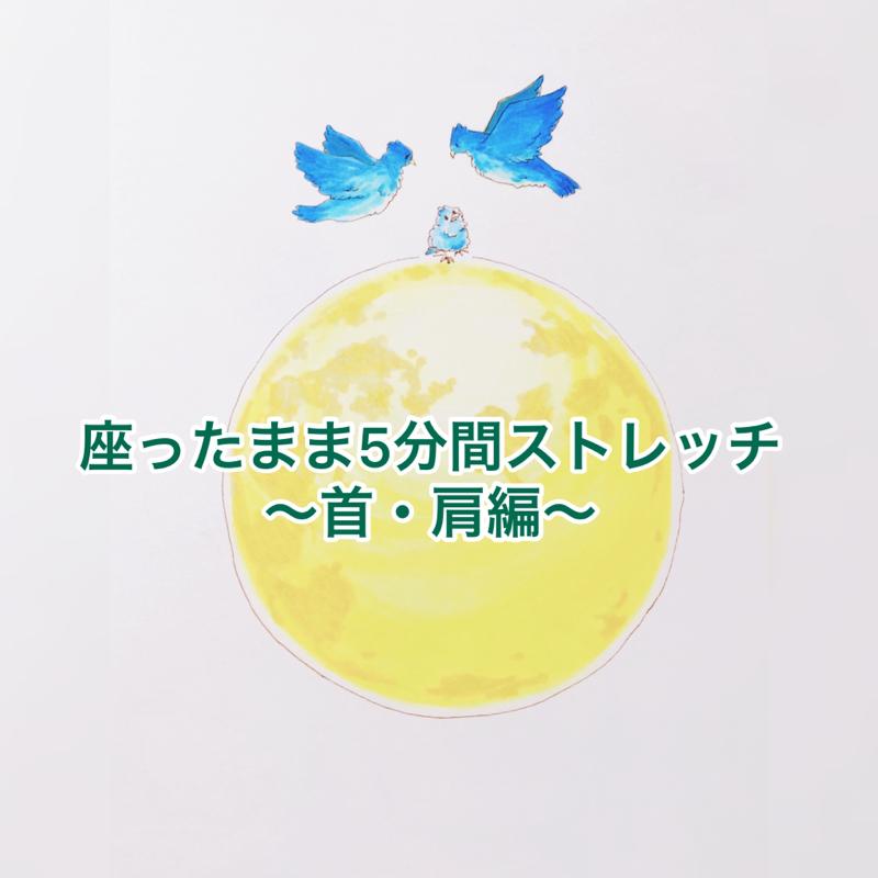 14膳目🍽座ったまま5分間ストレッチ〜首・肩編〜