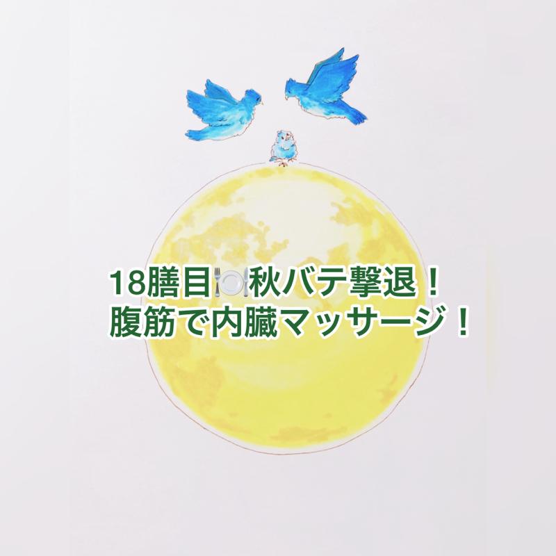 18膳目🍽秋バテ撃退!腹筋で内臓マッサージ!