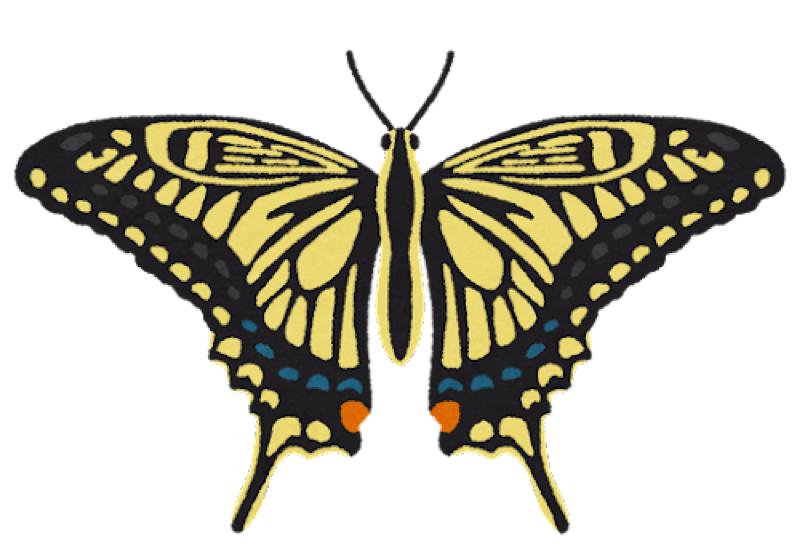 #35 どんなときでも胸の蝶がお前を守ってくれる【映画トーク】