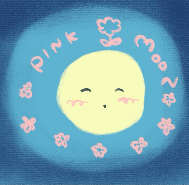 4月の満月 ピンクムーン