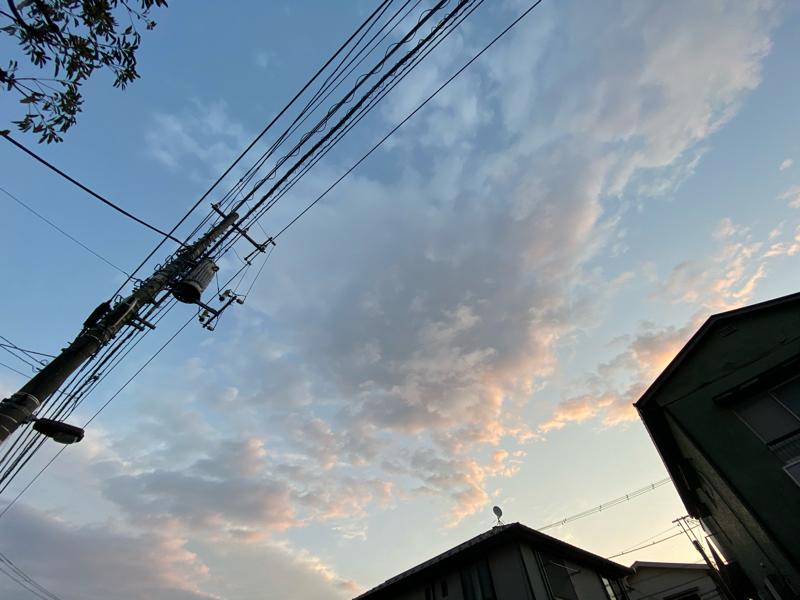 歌いたい気分なのたぁ~(*ฅ•̀ω•́ฅ*)ガオー