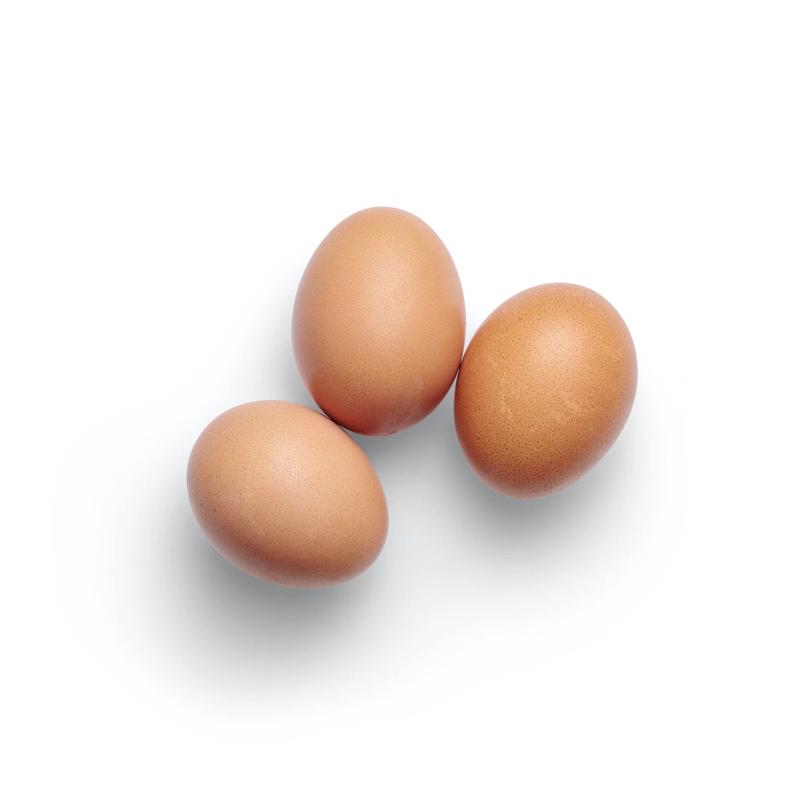 卵の秘密を考える #101