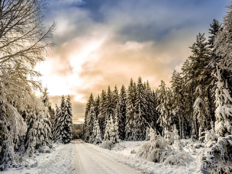 冬の空気が一番好き 大好きな空気を見つけよう #143