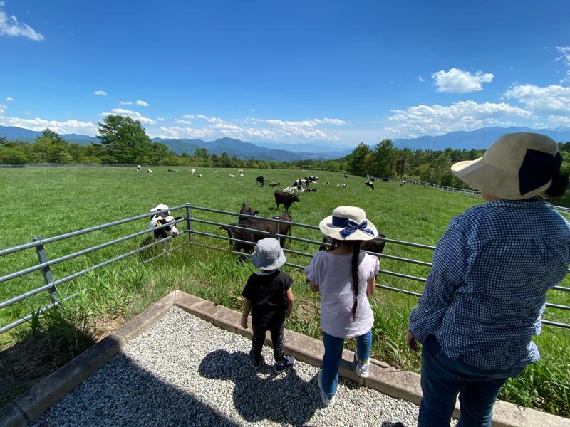 週末の振り返り、畑仕事、八ヶ岳、ランチと牛さん  #255
