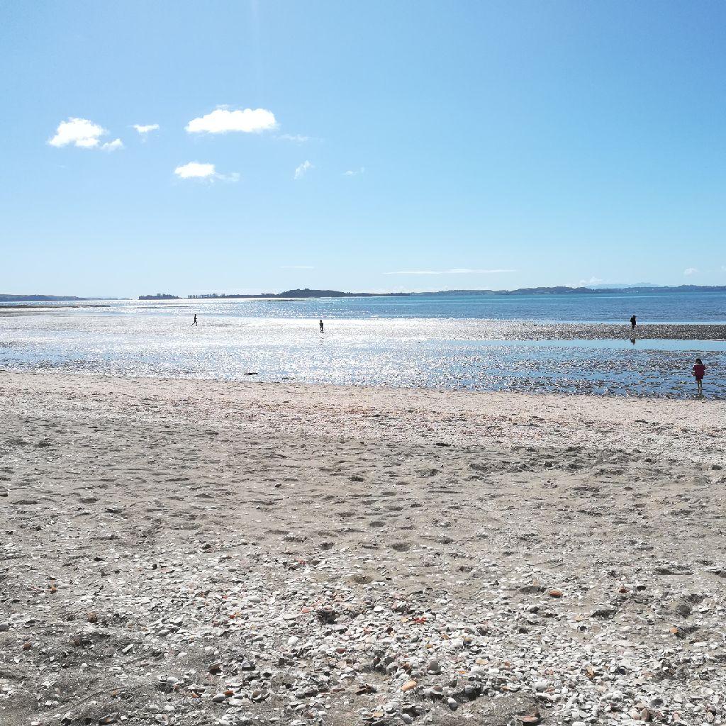 ニュージーランドのビーチ(1)