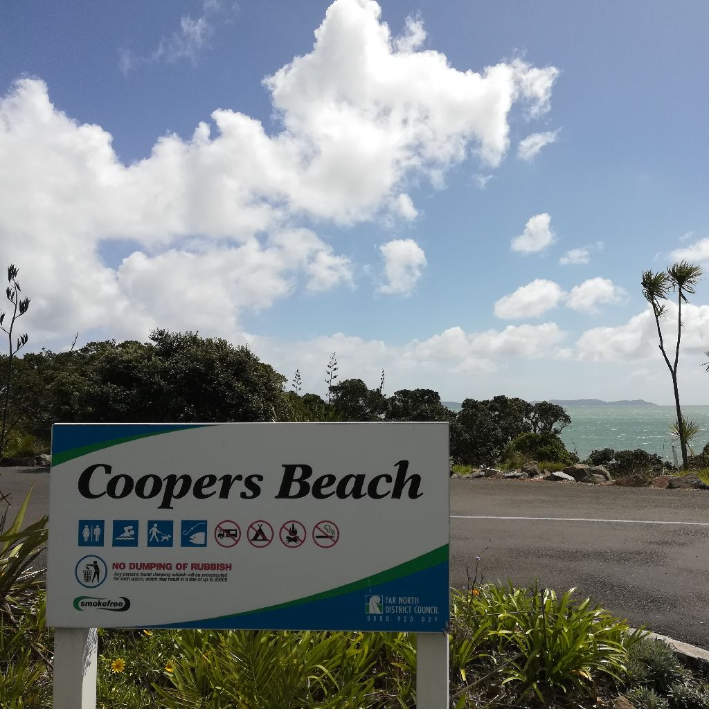 Coopers Beachの様子