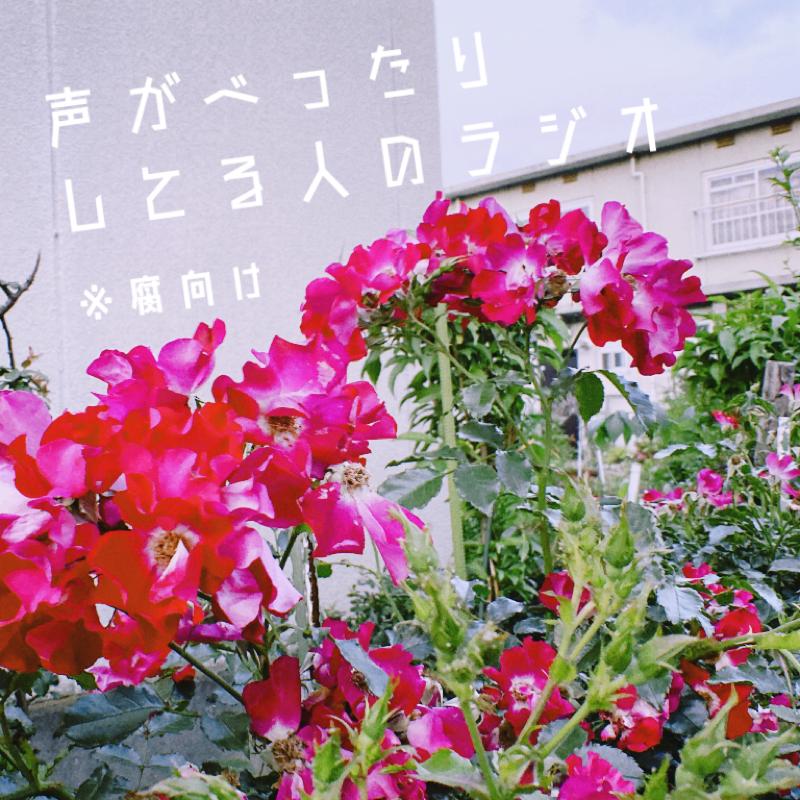 ▼54 マシュマロリクエスト〜土×土について〜後編