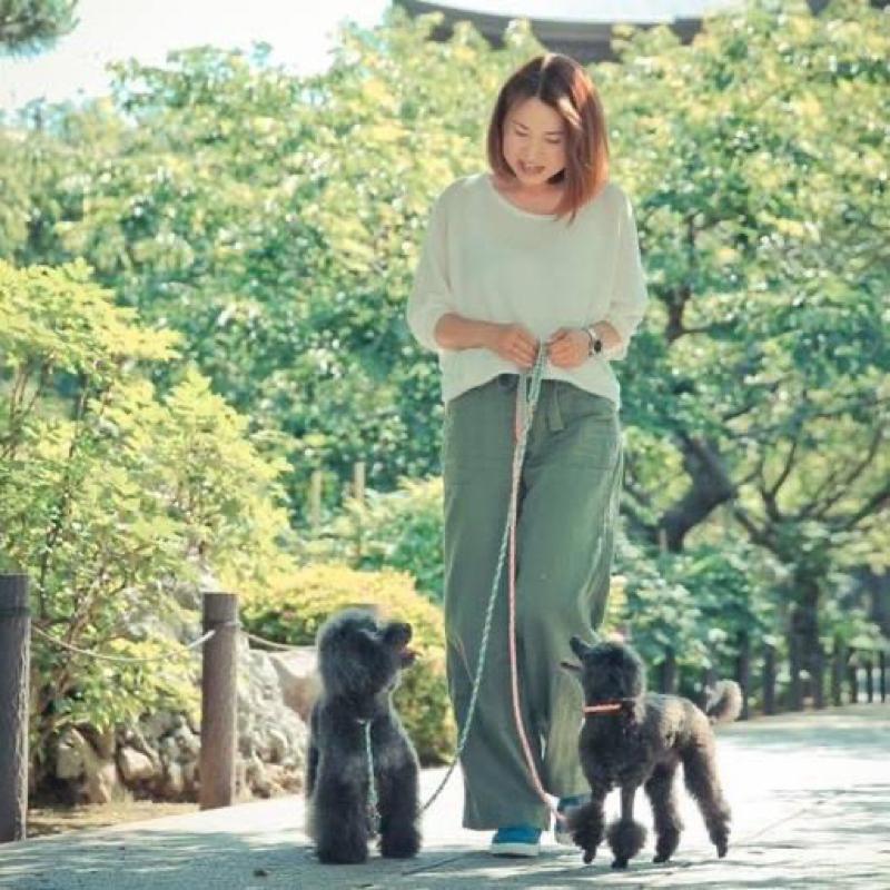 【#82】愛犬のしつけに大切な小野さん流「おもちゃの選び方」を解説!目的を分けた管理がポイント!
