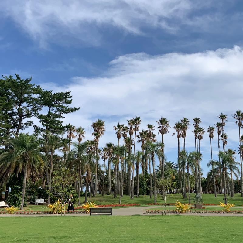 【宮崎観光でオススメ】ボタニックガーデン青島 〜南国気分で楽しい〜