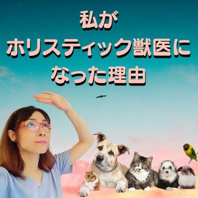 #1. 自己紹介(私がホリスティック獣医になった理由)