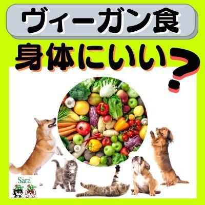 #34. 犬猫はヴィーガンになれる?栄養と動物福祉の観点から解説!