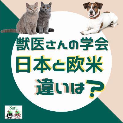 #41. 獣医さんが集まる学会:日本と欧米のちがいは?