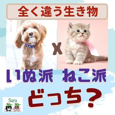#59. あなたは犬派・猫派どっち?犬と猫の大きな違い