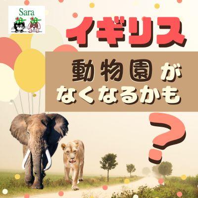 #76. イギリス:いつか動物園がなくなるかも?サーカスは禁止に!動物福祉のお話