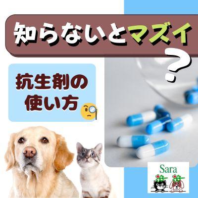 #78. 質問への回答:知らないとマズイ??抗生剤の正しい使い方