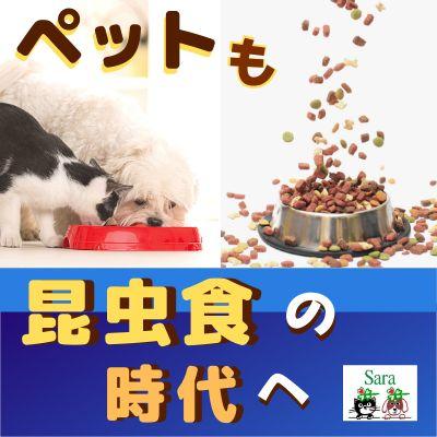 #83. 日本にも来る!昆虫食ペットフード:スイスから販売☆