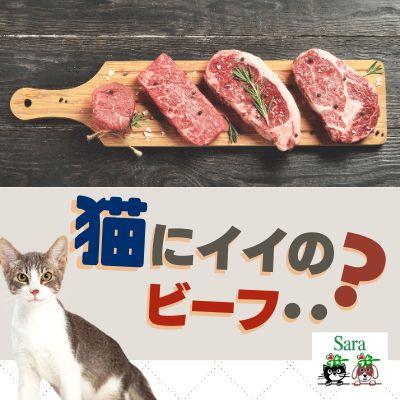 #98. 質問への回答:猫に大型の動物の肉を与えるのは不自然では?
