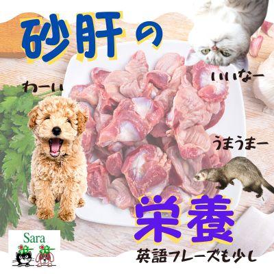 #156. 意外な効能!砂肝:豊富に含まれている栄養は?ペットに与えてみよう!
