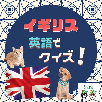 #177. 英語でクイズ!イギリスのペットに関するリアルな試験問題!やってみよう!