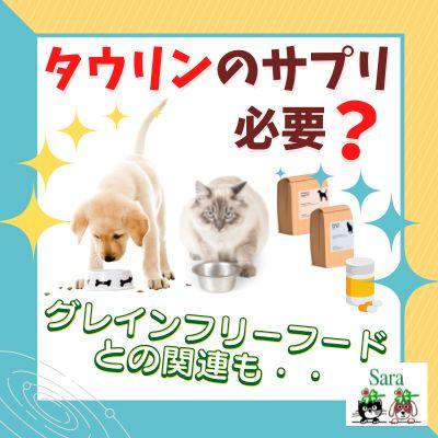 #348. タウリンのサプリは必要?量は?グレインフリーフードを与えている場合:大型犬・心臓病・猫