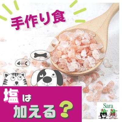 #356. 手作り食:塩はどのくらい与えたら良い?(質問に回答)