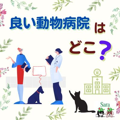 #381. どこか良い動物病院を教えてもらえないでしょうか?(質問に回答)