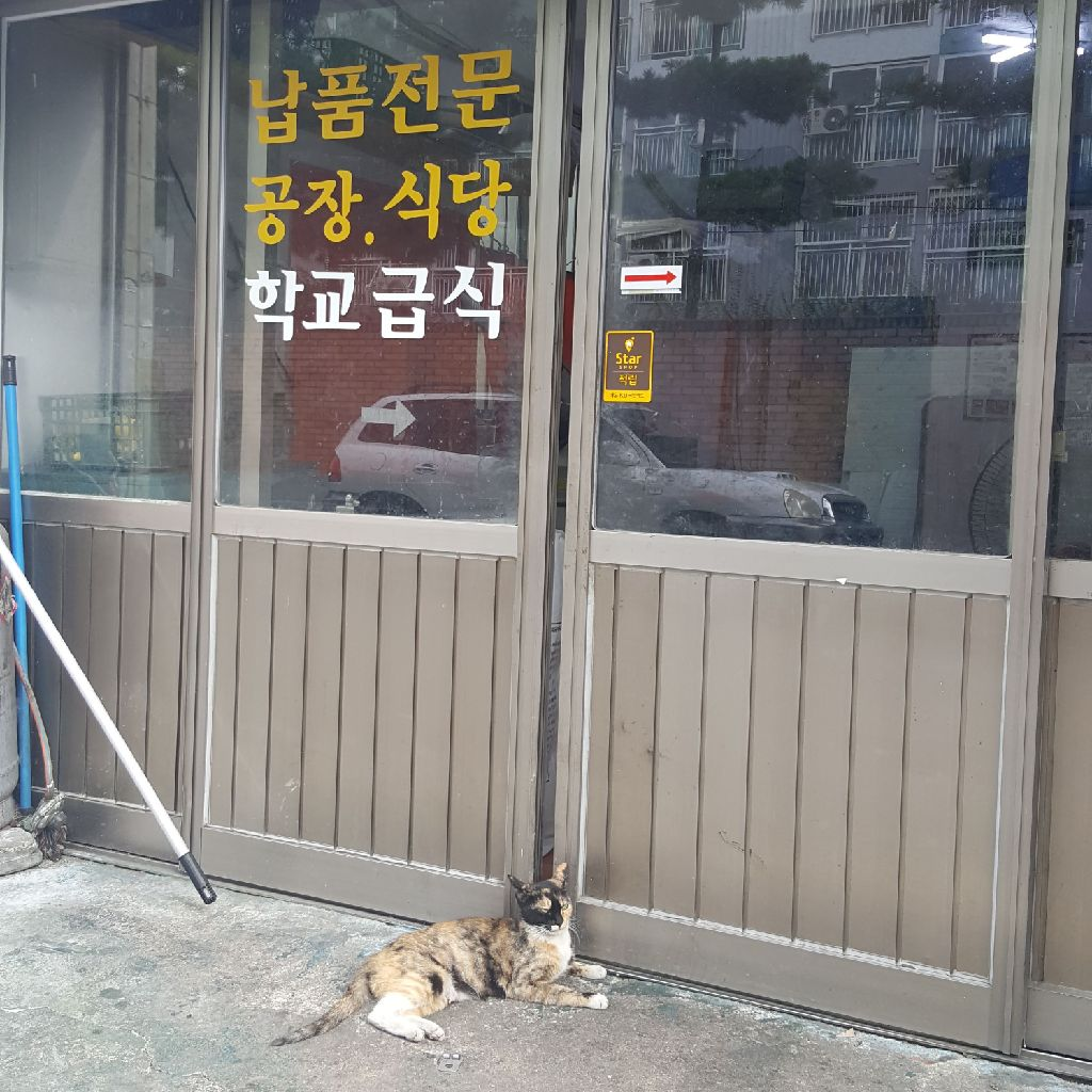 #2 韓国人が恐れる?!本音と建前文化