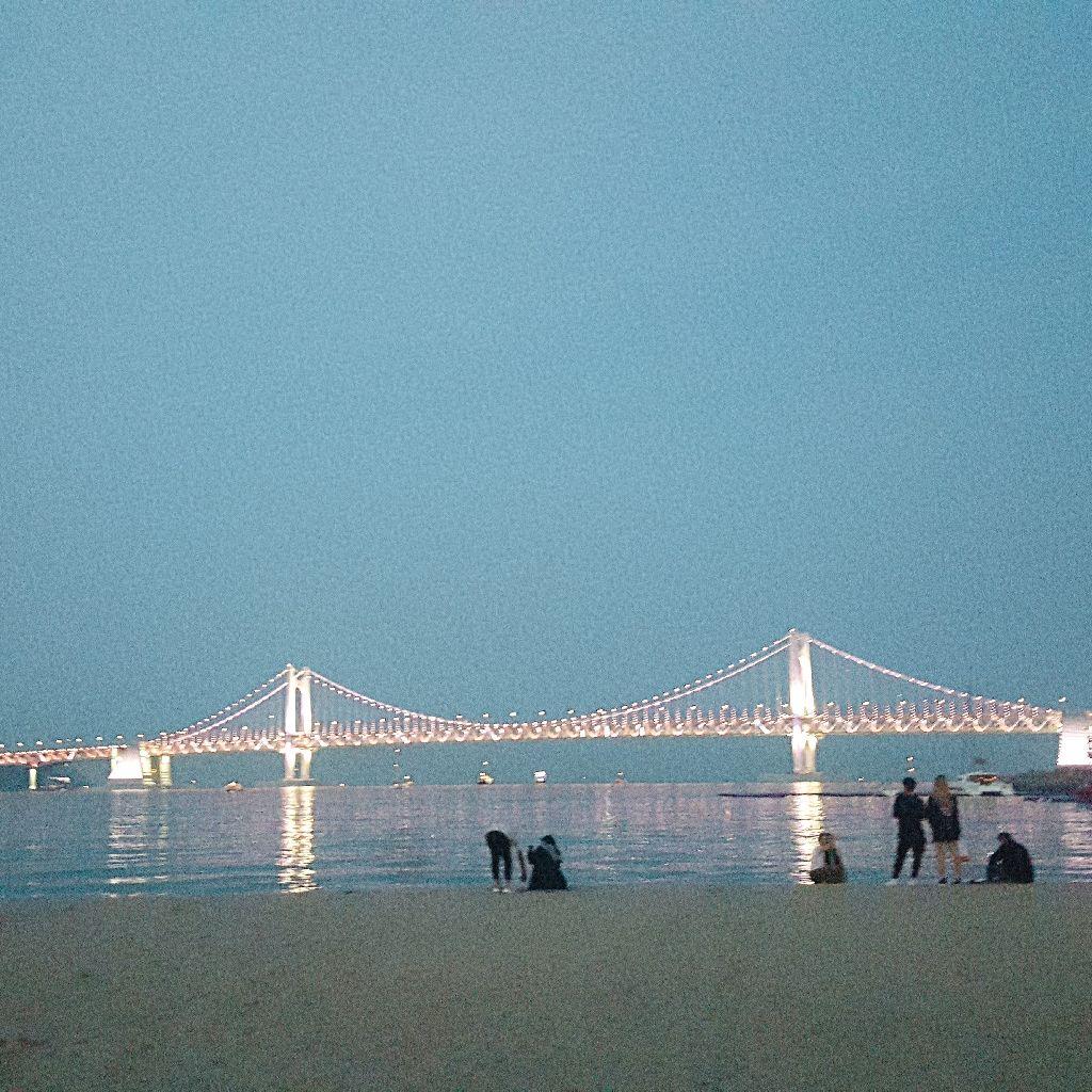 #43 韓国の地方都市紹介!🐚釜山編🐙