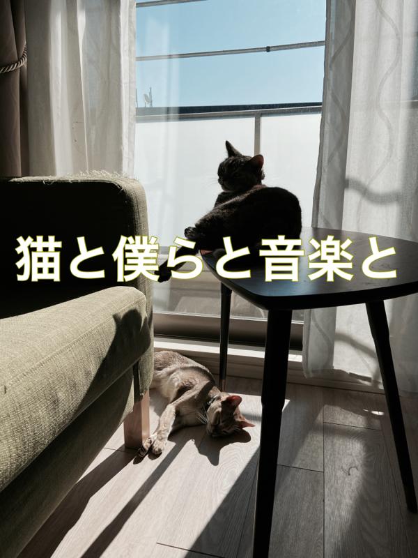 #01 自己紹介