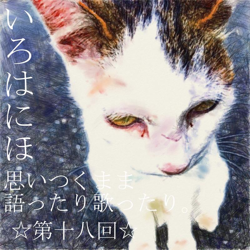 第十八回☆猫って可愛いですよね〜。
