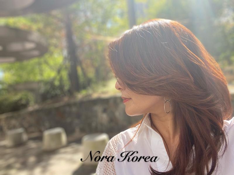 韓国生活20年、在韓妻のひとりごと。リアル韓国、仕事、トレンド、雑談