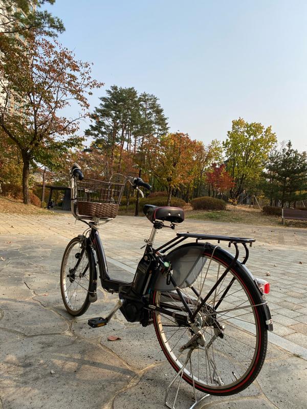 #40 日本から運んだブリヂストン電動自転車の優秀ぶりに感動