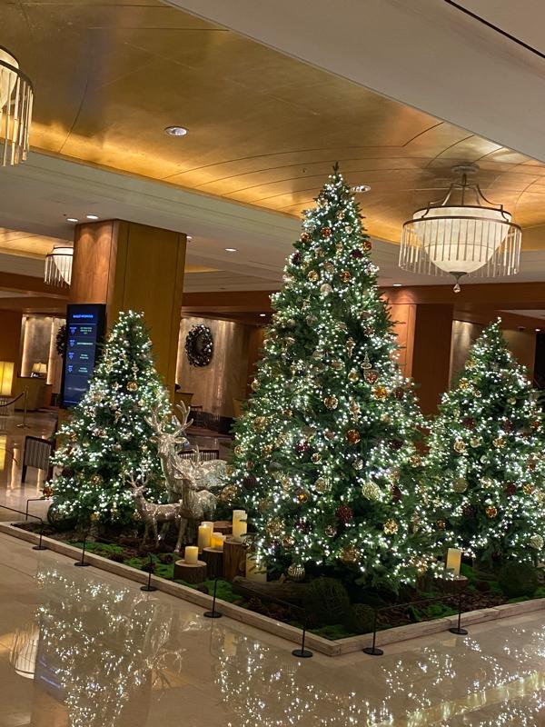 #48 すでにクリスマスの雰囲気。ロッテホテル明洞のツリーです。