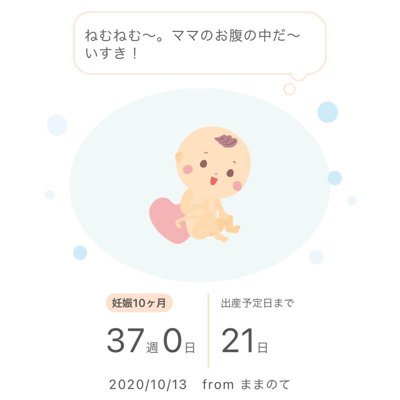 【16】今日は赤ちゃんが生まれる日(仮)/近況