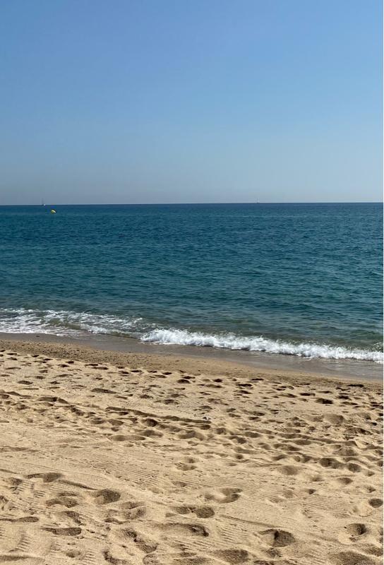 海から波の音をお届け!