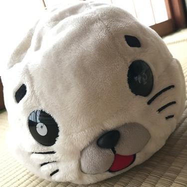 #5 【お仕事】現在のお仕事をすることになった経緯について パート②