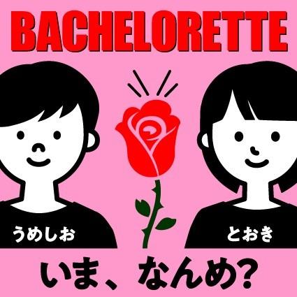 387目 あぶらなんめ?バチェロレッテー萌子さんと男性陣①ー
