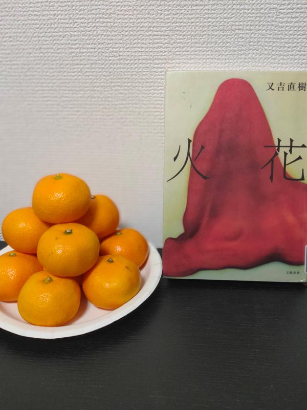 【#47】又吉直樹「火花」を読んだ感想