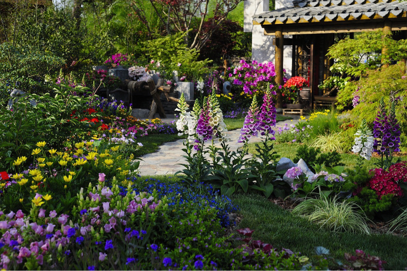 スペイン語 hayの例文「中庭には何がありますか?」