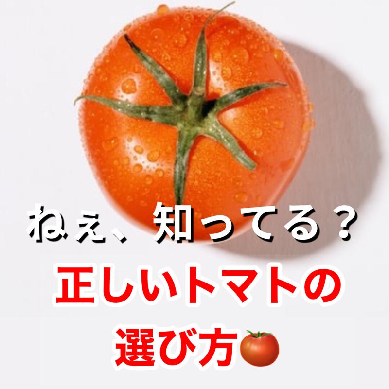 ねぇ、知ってる?正しいトマトの選び方